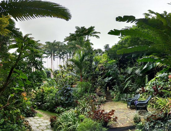 Hunte's Gardens: PANO_20171025_135434_large.jpg