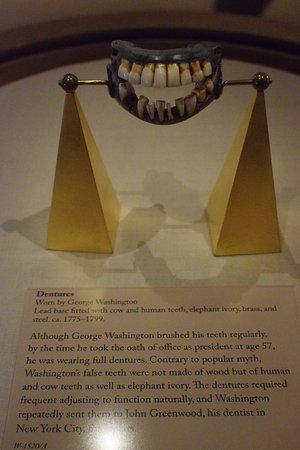 George Washington's Mount Vernon: George's dentures
