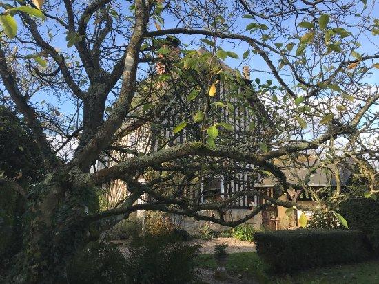 Salon de the le jardin de bourgeauville for Restaurant le jardin en ville