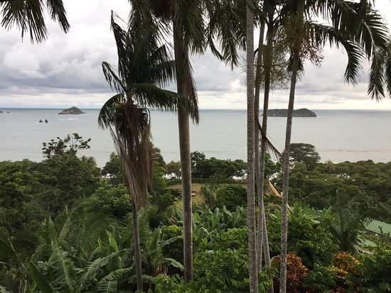 Hotel Costa Verde: Amazing view from our room!