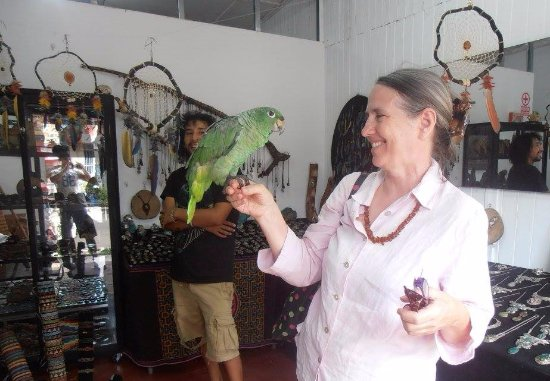 Itaya Arte: Rosemary & 'Bebé' (the rescued green parrot)
