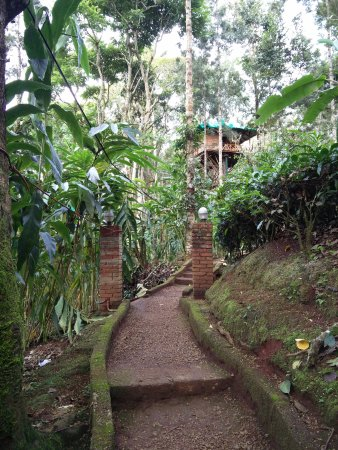 Dream Catcher Plantation Resort (Munnar, Kerala) - Hotel ...