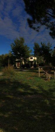 Monteleone d'Orvieto, Italy: photo2.jpg