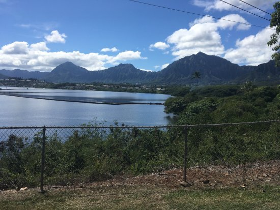 Kaneohe, Havai: photo2.jpg