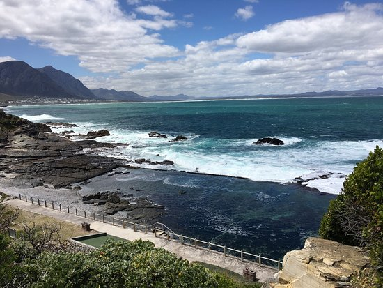 The Marine Hermanus: photo1.jpg