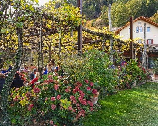 Cermes, Italia: IMG_20171028_131939_505_large.jpg