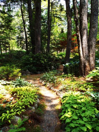 Sullivan, Maine: a lovely walk in the garden...paths to wander, sculptures to discover.