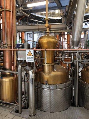 Marzadro Distillery: photo1.jpg