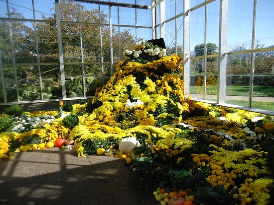 Frederik Meijer Gardens Sculpture Park Grand Rapids Top Tips Before You Go With Photos