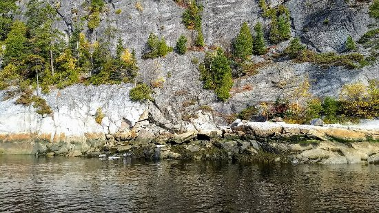 Tadoussac, Canada: IMG_20171019_114056099_large.jpg