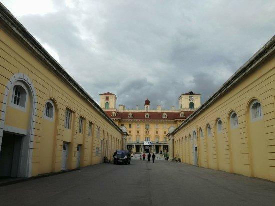 Eisenstadt, Österreich: received_10214423855941410_large.jpg