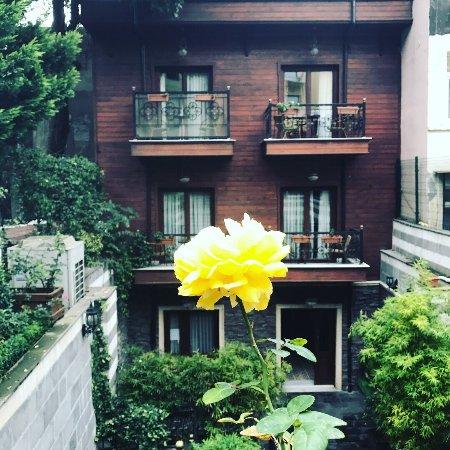 Rose Garden Suites Istanbul: photo0.jpg