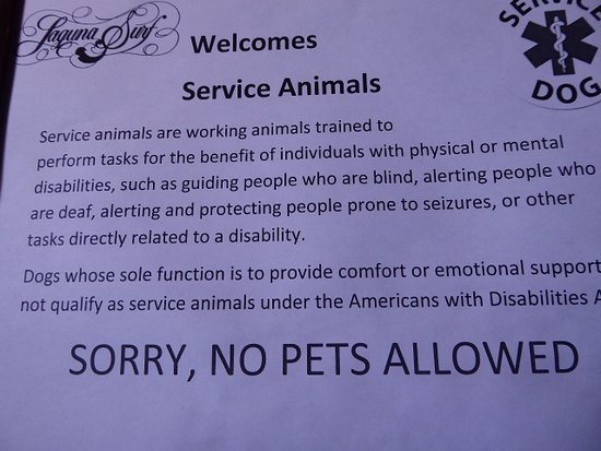 Laguna Surf : Service pet guidelines (as posted in the elevator)