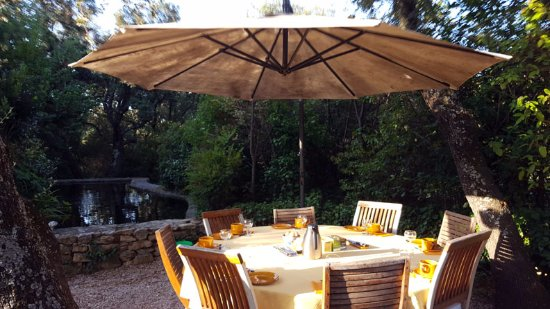 Saint-Marc-Jaumegarde, France: Breakfast is served at an umbrella table beside the koi pond
