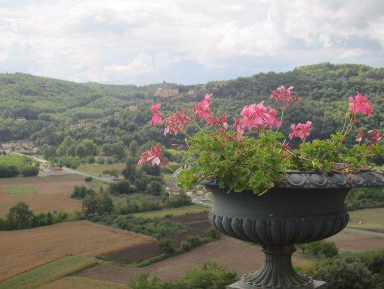 Photo de les jardins de marqueyssac vezac tripadvisor - Les jardins de marqueyssac ...