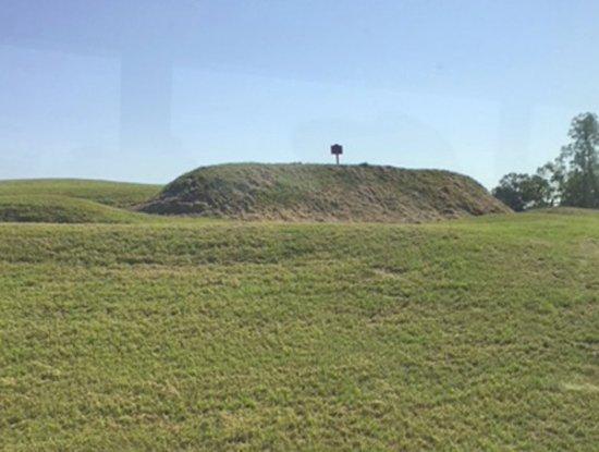 Vicksburg National Military Park: Confederate redoubt.