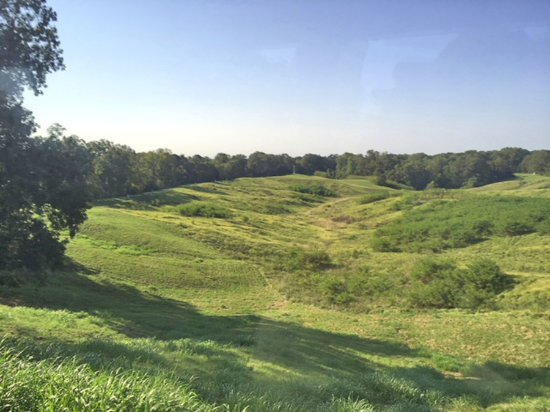 Vicksburg National Military Park: Confederate line was on the hill (left on photo); Union army crossed difficult terrain to reach