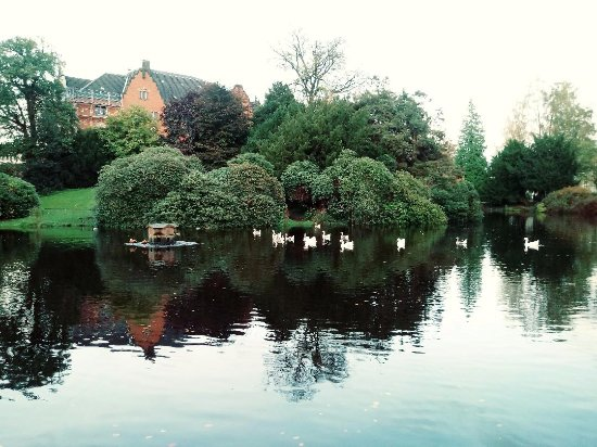 things to do in oldenburg