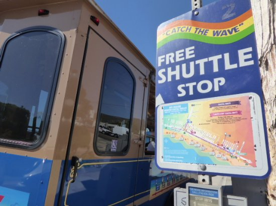 Laguna Beach Trolley: Well marked stops with route info