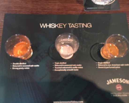 Midleton, Irlanda: whiskey tasting
