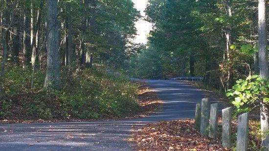 Fort Mill Ridge Civil War Trenches