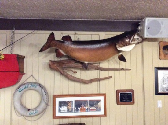 Muskie Jake's Tap & Grill : The big one that didn't get away