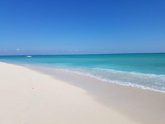 Quirimbas Archipelago, Mozambik: IMG-20170815-WA0020_large.jpg
