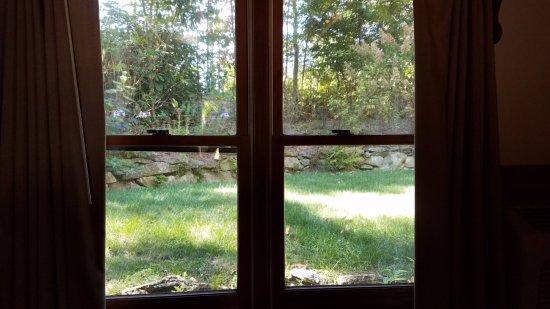 Laurelwood Inn: Room window looking onto the backyard.