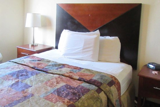 Rodeway Inn : Guest room with one bed