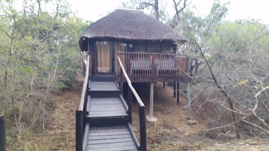 Marc's Treehouse Lodge Εικόνα