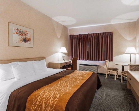 Tulalip, WA: Guest Room