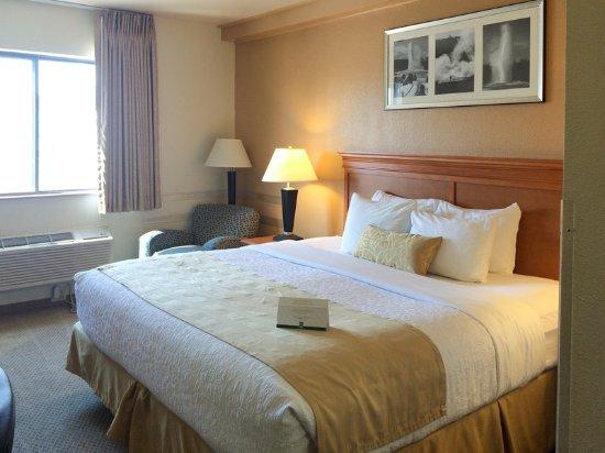 Hamilton, MT: Guest room