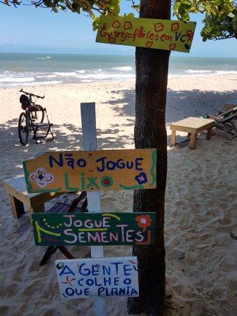 Foto De Manito Praia Porto Seguro Manito Praia E Suas