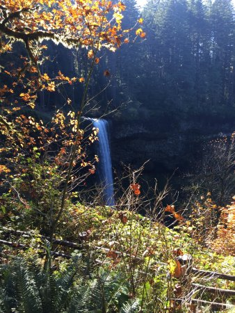 Silver Falls State Park: photo0.jpg