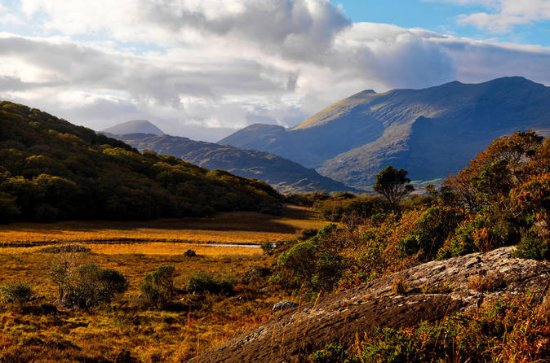 Ring of Kerry Full-Day Guided Tour...