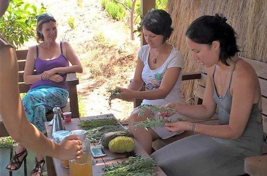 Workshop on a Herbal Farm - 4x4 ...