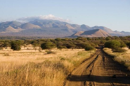 4 Days Tsavo West-East Amboseli Safari