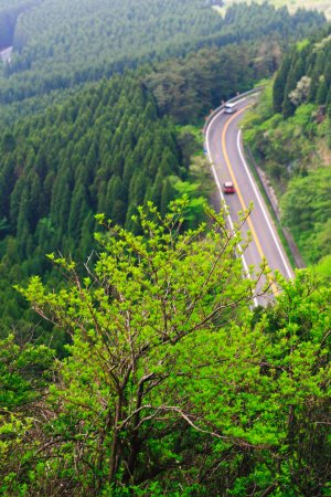 Oita Prefecture, Jepang: 初夏のやまなみハイウエイ・その5