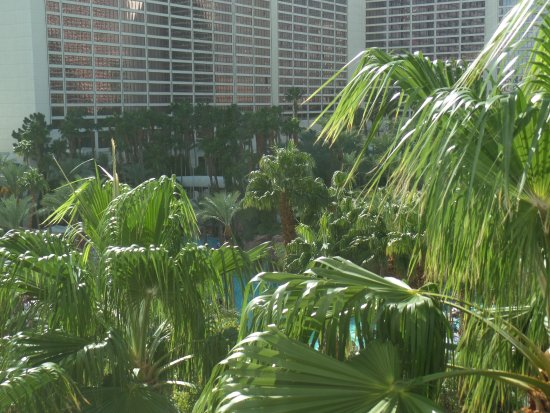 Hilton Grand Vacations at the Flamingo: View from 1-bedroom suite room 721.