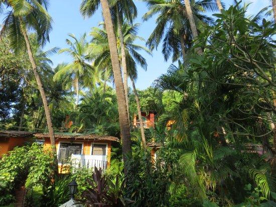 Palm Beach Lifestyle Resort Agonda Goa