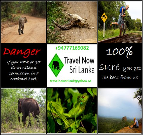 Travel Now Sri Lanka