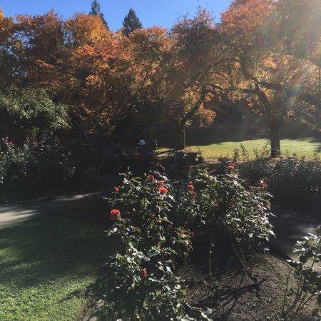 Burnaby, Canada : Part of Ross garden
