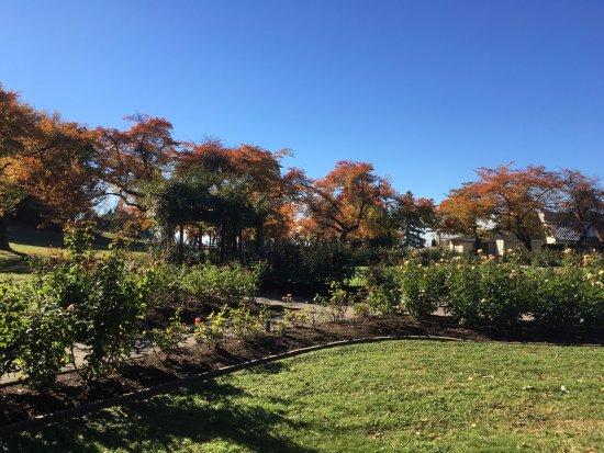 Burnaby, Canada : Another part of Ross garden