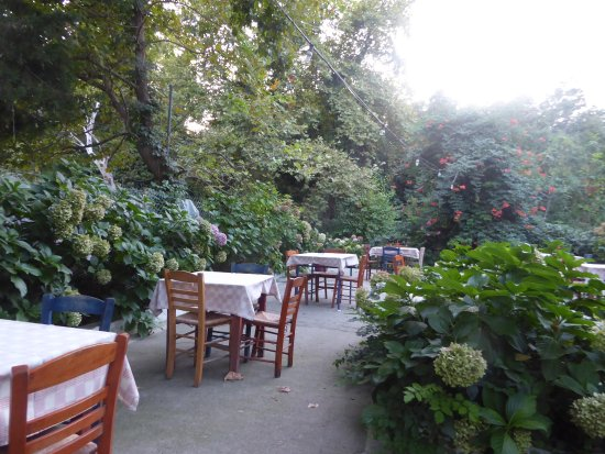Therma, Grecia: for dinner in a jungle