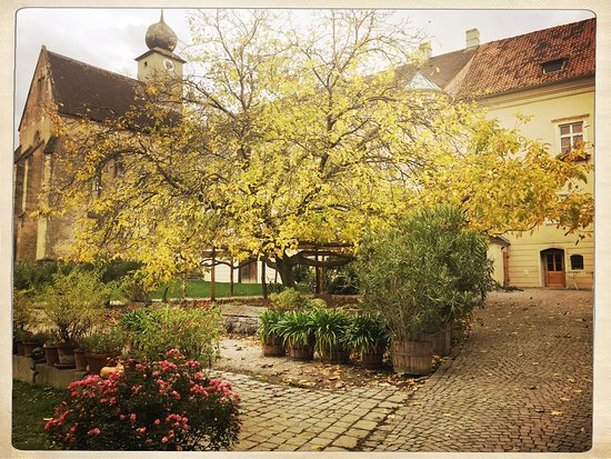 Kirchberg am Wagram, Austria: photo2.jpg