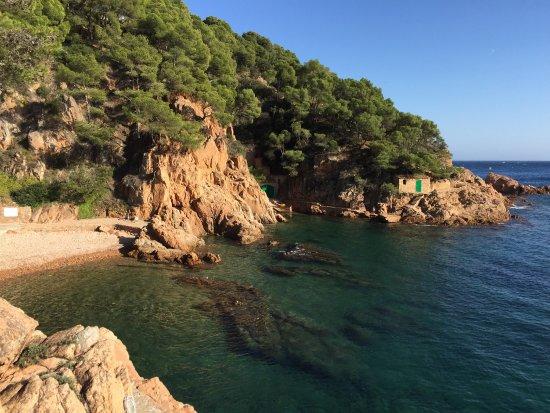 Tamariu, Spanien: photo1.jpg
