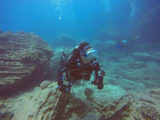 Seasport Divers: received_10212098467849424_large.jpg