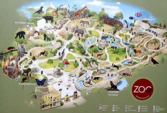 Antwerp Zoo (Dierentuin)