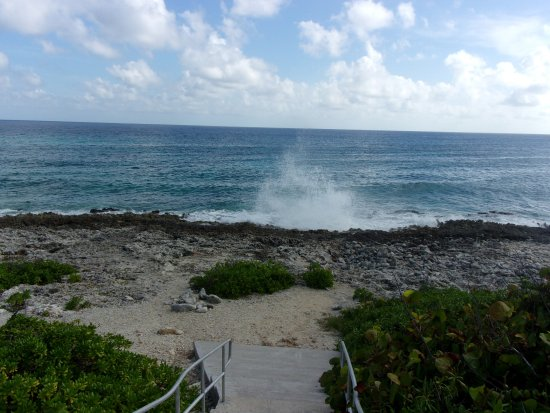 The Lighthouse Restaurant: blow holes