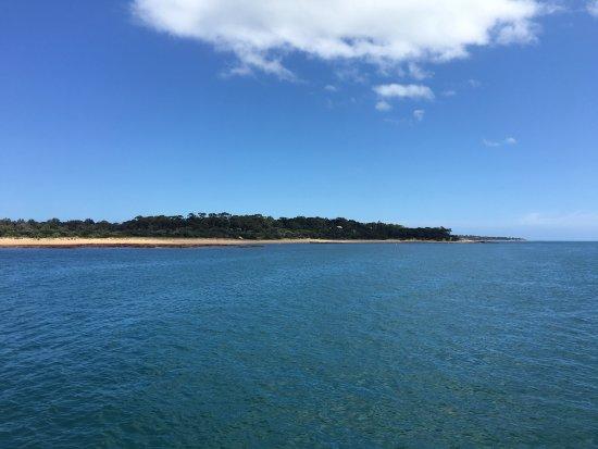 Phillip Island Wildlife Park: photo4.jpg